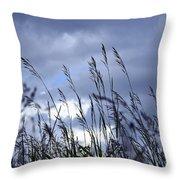 Evening Grass Throw Pillow
