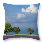 Evening In Provence Throw Pillow