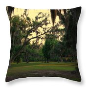 Evening In The Mossy Oaks Throw Pillow