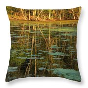 Evening Light On Missouri Pond 2 Throw Pillow
