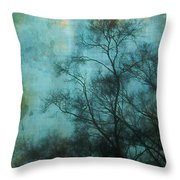 Evening Sky Throw Pillow by Judi Bagwell