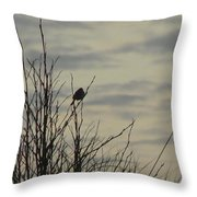 Evening Song Throw Pillow by Pamela Patch