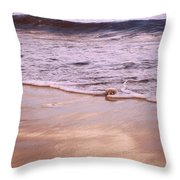 Ever So Gentle Throw Pillow