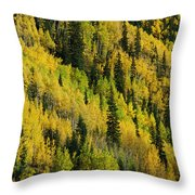 Evergreen And Quaking Aspen Trees Throw Pillow
