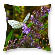 Everyday Miracles Throw Pillow by Byron Varvarigos