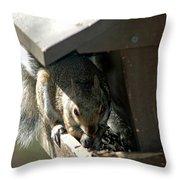 Evil Rodent Throw Pillow