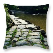 Exmoor National Park Crossing Bridge Throw Pillow