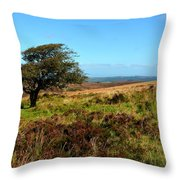 Exmoor's Heather-covered Hills Throw Pillow