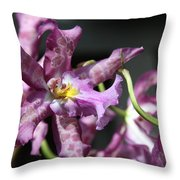 Exotic Orchids Throw Pillow