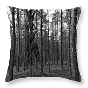 Exspruce Throw Pillow