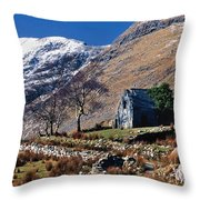 Exterior Of Rustic Home Throw Pillow
