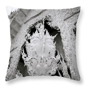 Extravagance Throw Pillow