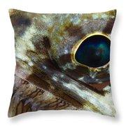 Extreme Close-up Of A Lizardfish Throw Pillow