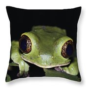 Extreme Head-on Close-up Of A Green Throw Pillow