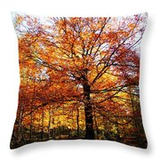 Eye Of The Forest Throw Pillow