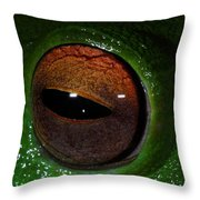 Eye Of The Frog Throw Pillow
