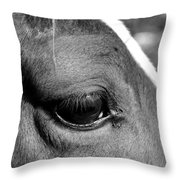 Eye Of The Horse Black And White Throw Pillow