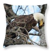 Eye On The Prize Throw Pillow