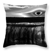 Eye Over Everglades Throw Pillow