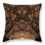 Eyes Of Secrecy Throw Pillow