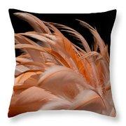 Fabulous Flamingo Feathers Throw Pillow