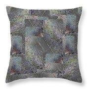 Facade 17 Throw Pillow