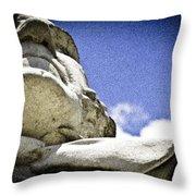 Face Of Courage Throw Pillow
