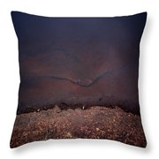 Face Of The Lake Throw Pillow