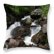 Facinating Falls Throw Pillow