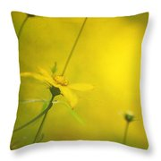 Faded Dreams Throw Pillow
