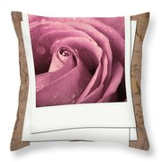 Faded Rose Photo Throw Pillow
