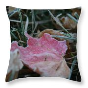 Faded Summer Throw Pillow