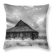 Faded With Age Throw Pillow
