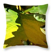 Fading Into Fall Throw Pillow