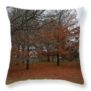 Fading Palate Throw Pillow