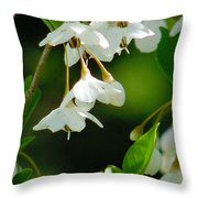 Faerie Bells 2 Throw Pillow