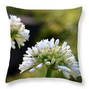 Faintly Lavender Throw Pillow