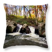 Fairy Falls Throw Pillow