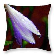 Fairy Hat Throw Pillow