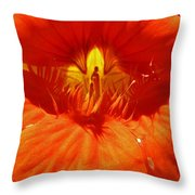 Fairy In Blossom Throw Pillow