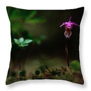 Fairy Slipper Orchid Calypso Bulbosa Throw Pillow