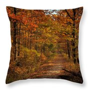Fall At Center Point Trailhead Throw Pillow