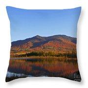 Fall At Pondicherry Throw Pillow