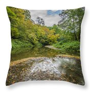 Fall At The Low Stream Throw Pillow