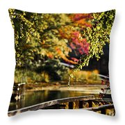 Fall At Tyler State Park Throw Pillow