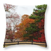 Fall Beauty Throw Pillow
