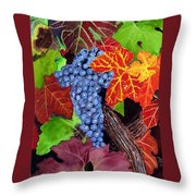 Fall Cabernet Sauvignon Grapes Throw Pillow by Mike Robles