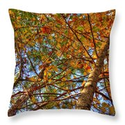 Fall Canopy Throw Pillow