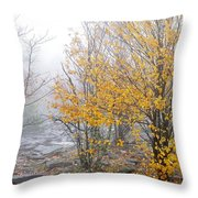 Fall Color And Fog Throw Pillow