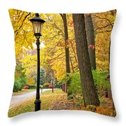 Fall Color And Lamppost Throw Pillow